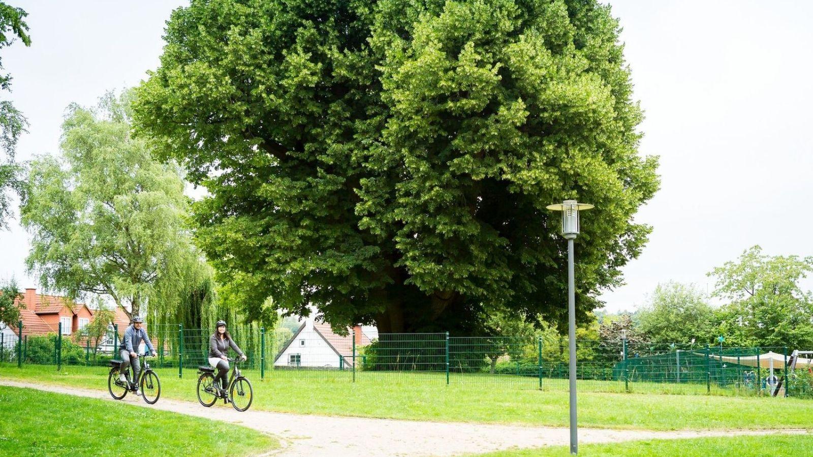E Bike Touren durch das Weserbergland